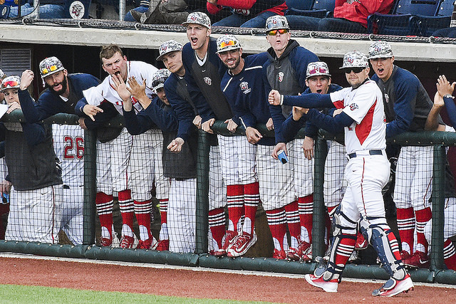 2017 Baseball Season Preview