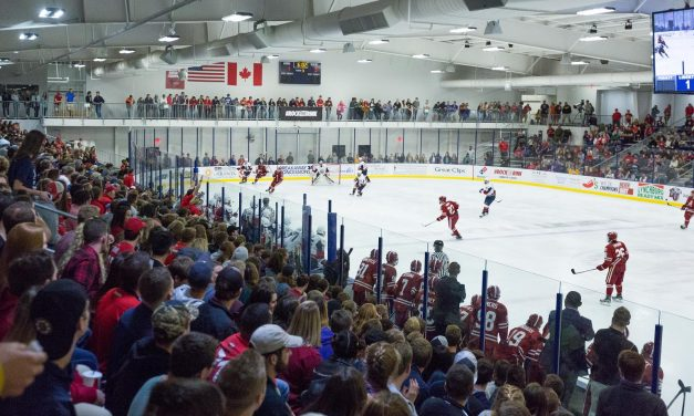 Q&A With Stony Brook Hockey Writer Peter Lupfer